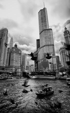 Mentor Series: Chicago