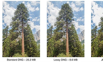 New Adobe DNG 1.4 Image Format Offers 'Lossy Compression' For Smaller RAW Files