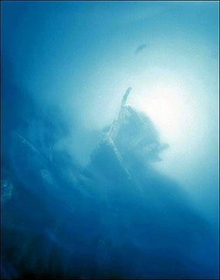 """""""Yemaya-Underwater-Camera-Photographed-off-the-c"""""""