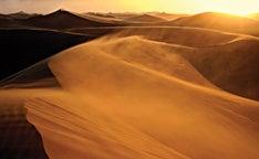 Desert promo