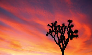 The Best National Parks For Photography