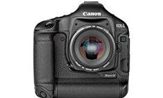 Camera Test: Canon EOS-1D Mark IV