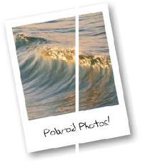 Typepad Import Image