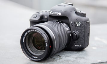 Hands-On: Canon 7D Mark II DSLR and 400mm F/4 DO IS Lens