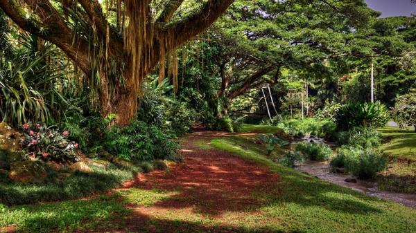 httpswww.popphoto.comsitespopphoto.comfilesimages201504sneiders_hawaii_mentor_series_14-2.jpg
