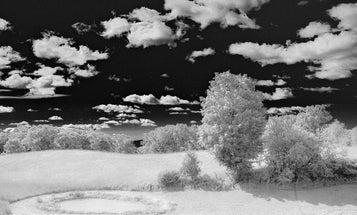 Software Workshop: Fake Infrared Photography Using Adobe Camera Raw