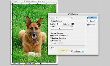 Megabytes, Megapixels, JPEG Compression, and File Size Confusion