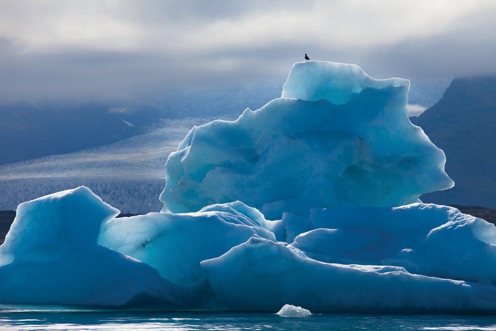 """Iceberg,"