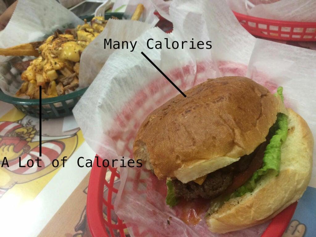 Google Calorie Camera