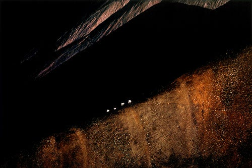 """Landscapes-After-Dark-Taken-in-Dallas-Sheep-walk"""