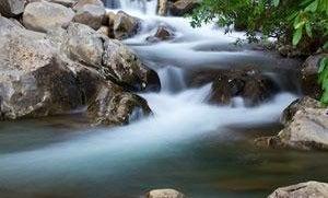 Mentor Series: Smoky Mountains Nat'l Park