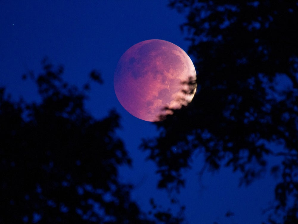 Blood moon photo in New York