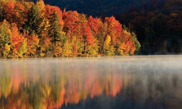 How To Take Great Fall Photographs