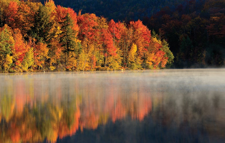 How-To-Take-Great-Fall-Photographs