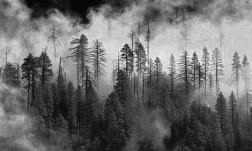Reader Gallery: 44 Powerful Black-And-White Landscapes