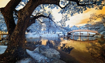 Tips for Getting Started in Infrared Photography