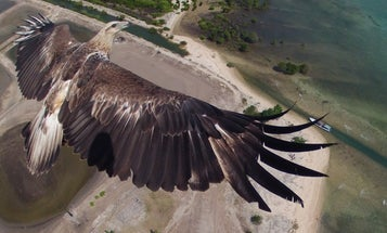 The Winners Of Dronestagram's First Drone Photo Contest Are Impressive