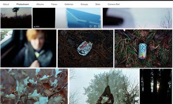 How to save and store your photos before Flickr deletes them