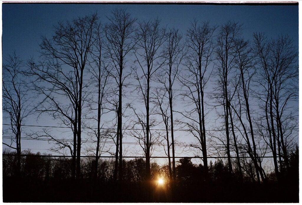 Landscape photo developed with Cinestill