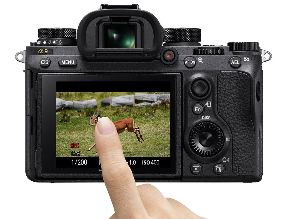 Sony a9 motion tracking