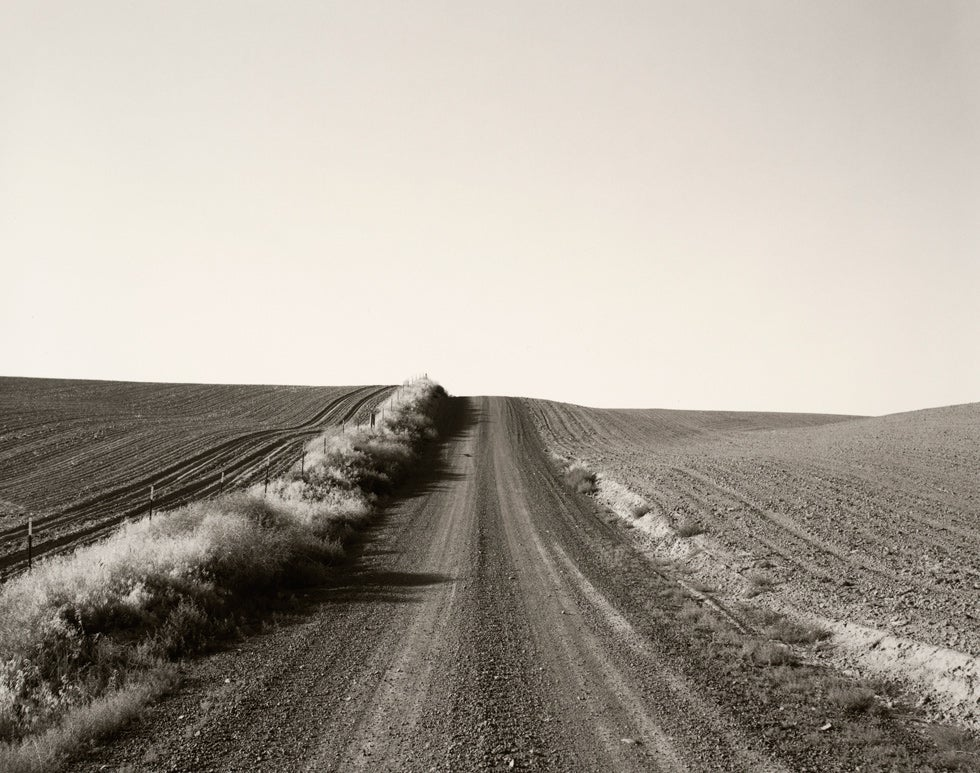 On the Wall This Month: Robert Adams's New Topographics