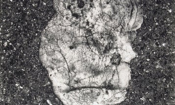 """Exhibits to Watch in 2013: Irving Penn's """"Underfoot"""""""