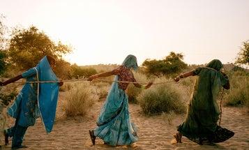 Winners of Syngenta Photo Award 2015 Announced