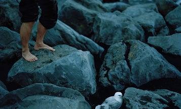 Acacia Johnson Finds Magic Light Inside the Arctic Circle