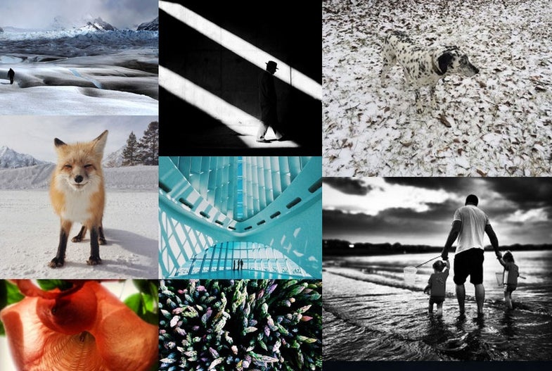 IPPAwards 2014: The Best iPhone Photography