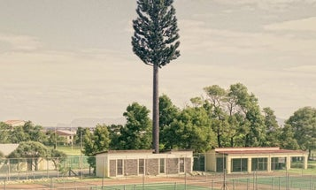 That's No Tree, It's a Tower