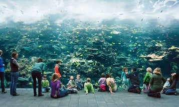 Thomas Struth Explores the Relationship Between Human Beings and Technology