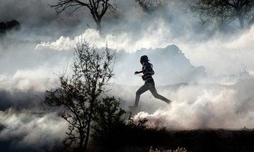 Photojournalism of the Week: November 16, 2012