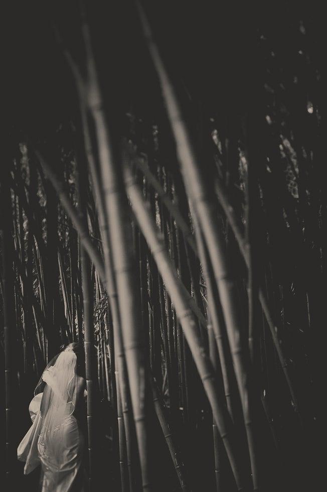 httpswww.popphoto.comsitespopphoto.comfilesfilesgallery-imagesAPWedding-Pfister-2.jpg