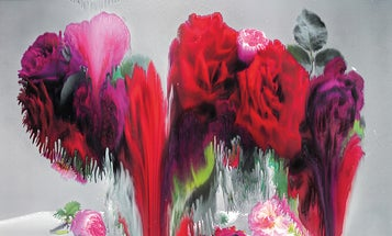 The Influencers: Nick Knight