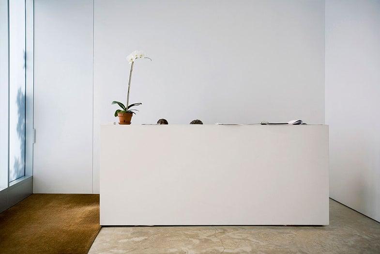 On the Wall: Andy Freeberg's Art For Art's Sake