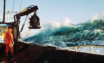 Corey Arnold, Creature of the Sea