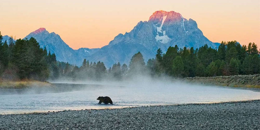 Become a better nature photographer