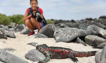 How to selfie responsibly, and other tips for not damaging wildlife while shooting