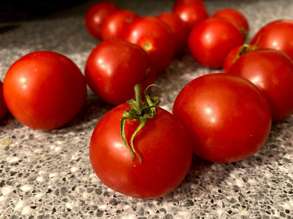 Tomatoes on a counter
