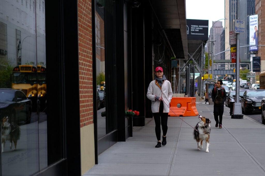 walking a dog on the sidewalk