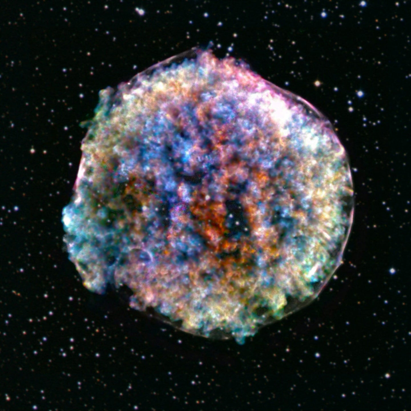 This fluffy ball contains the story of the universe
