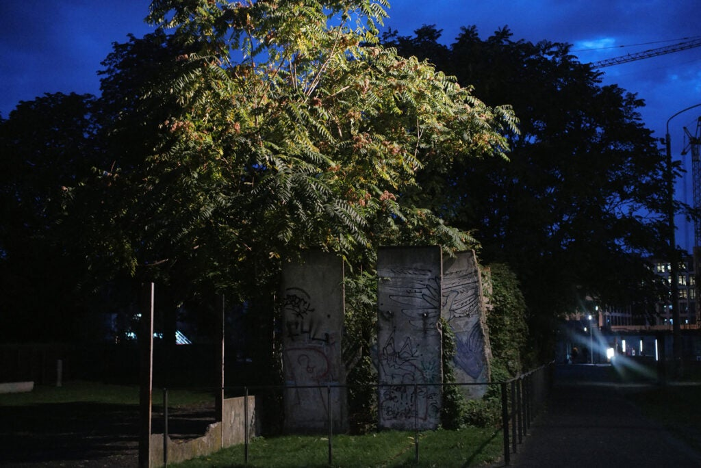 small building and trees