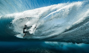 The best action sports photographs of the year