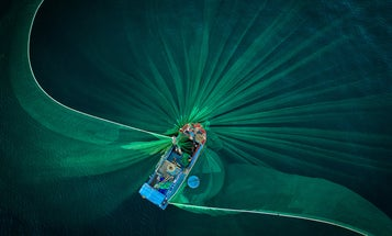 Stunning photos from the Smithsonian's 17th annual photo competition revealed
