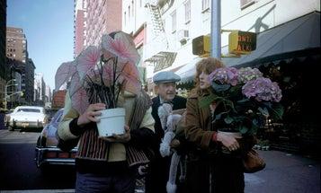 Joel Meyerowitz on making photographs in the street