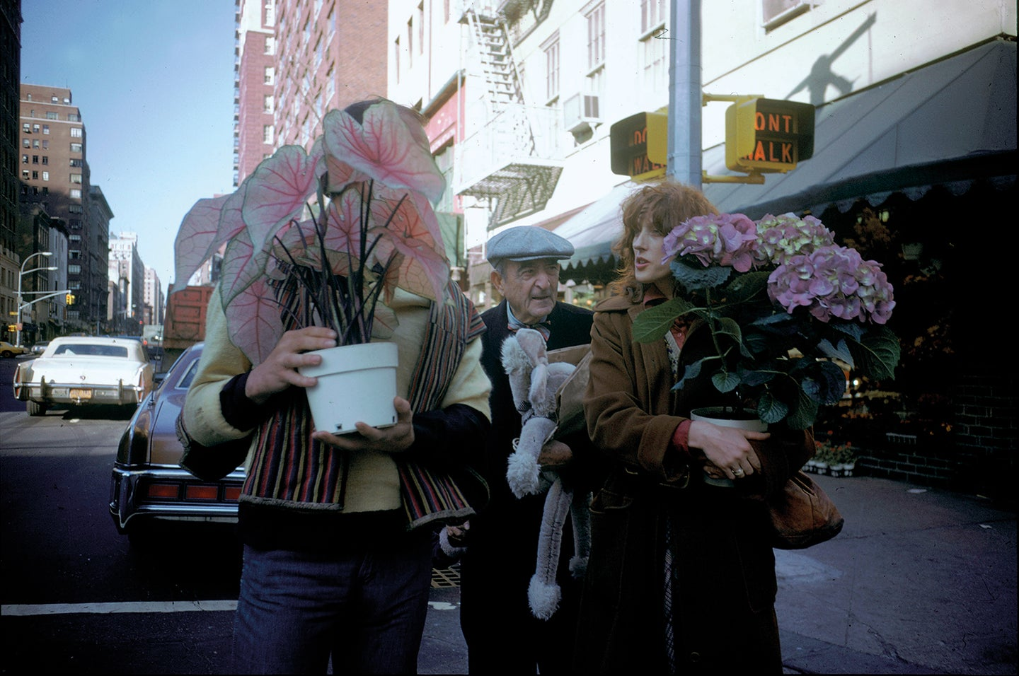 People carrying plants in New York