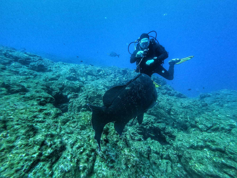 Scuba diver taking pictures underwater