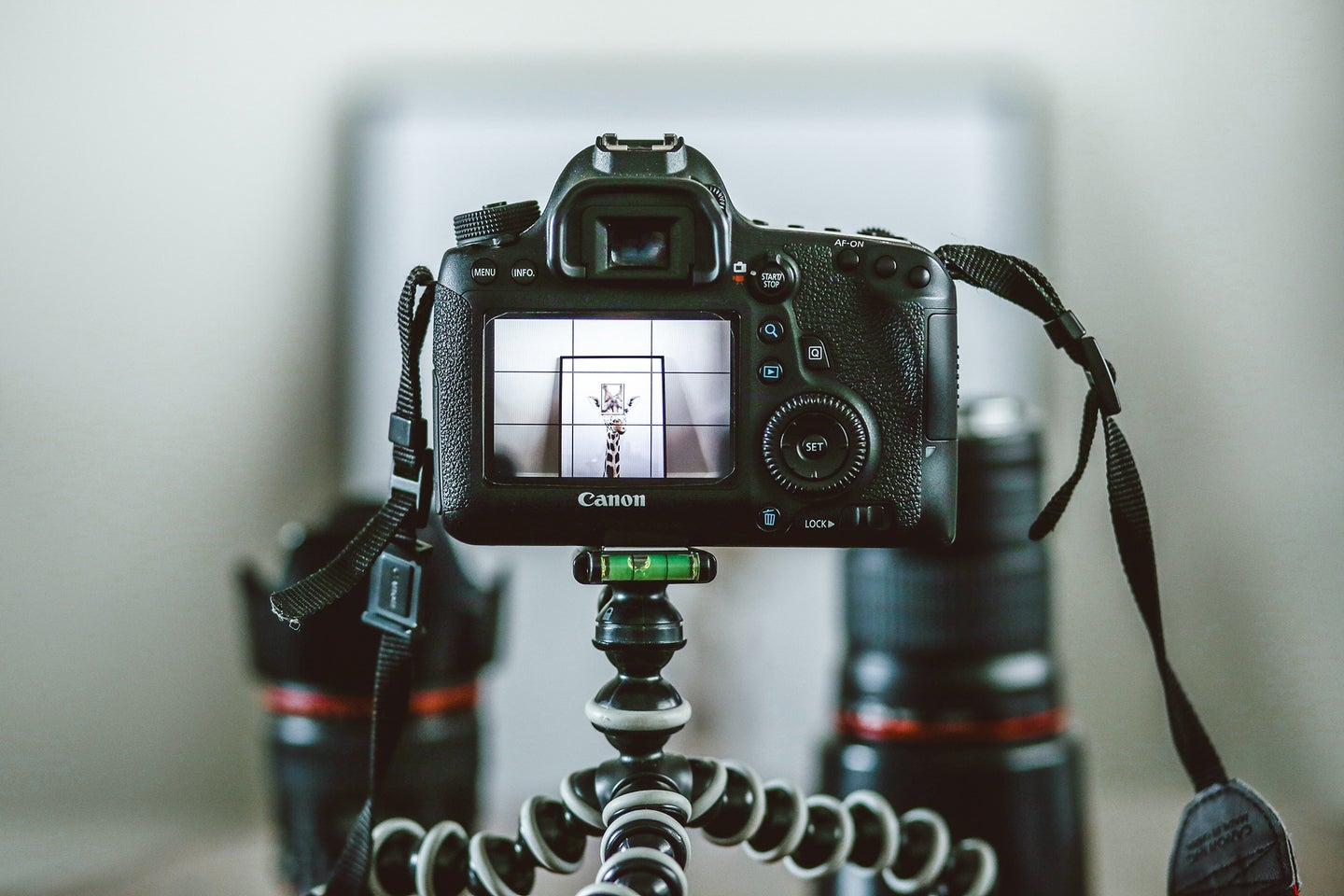 canon camera on a small tripod with lenses in the background