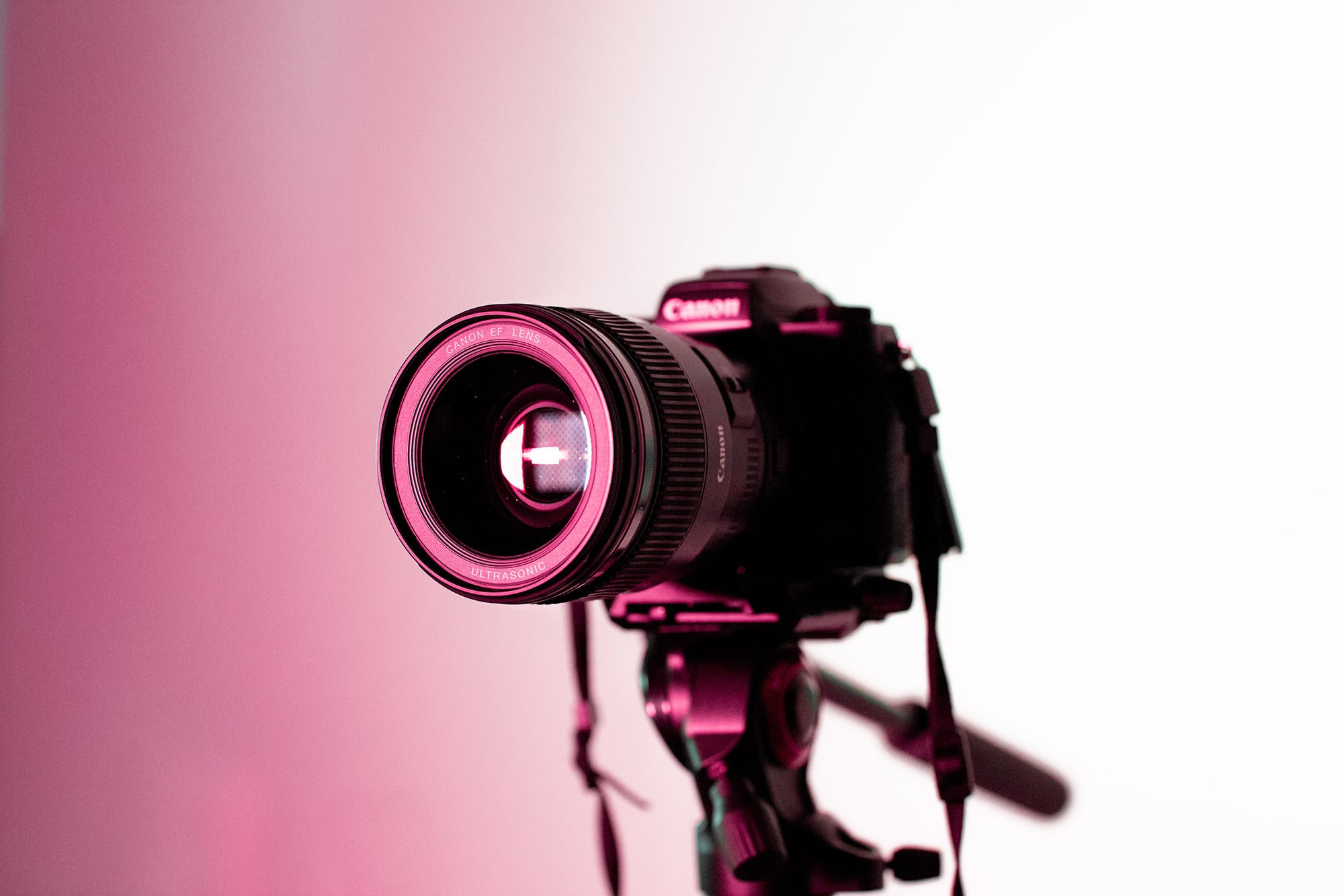 canon camera on a tripod with a pink light