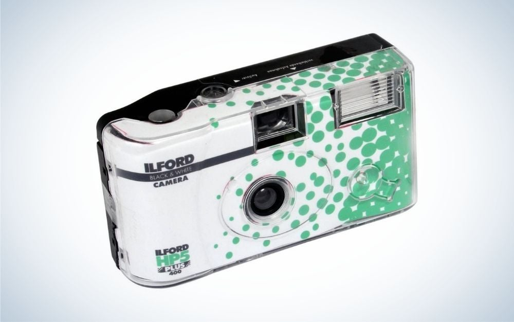 Disposables cameras make great Father's Day gifts for photographers.